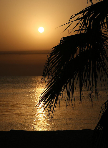 kuwait5.jpg