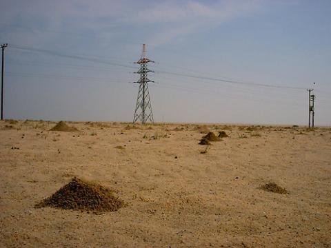 desierto-kuwait.jpg